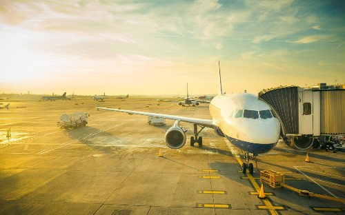 'We're covered in bees': 15 of the weirdest reasons for flight delays