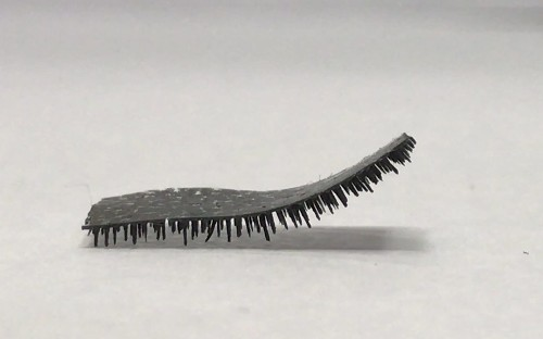 Tiny robot caterpillar designed to walk through body delivering drugs