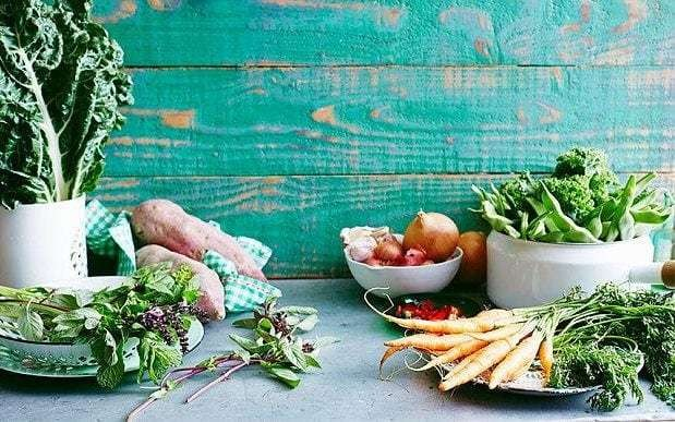 Long term vegetarian diet changes human DNA raising risk of cancer and heart disease