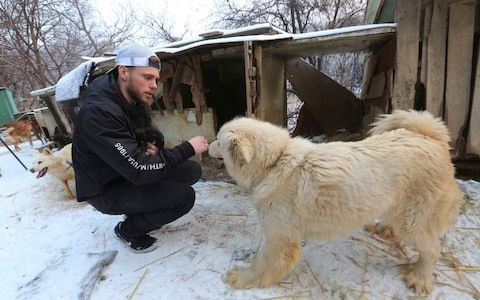 'Dogs are friends. Not Food': Olympic skier accused of cultural colonialism as he adopts puppy from dog meat farm in South Korea