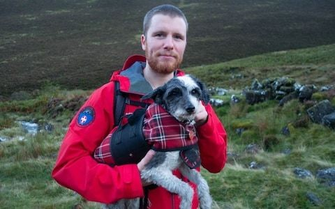 Tired dog triggers Lake District Rescue after refusing to walk any further