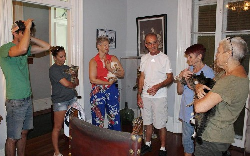 Hurricane Irma: Staff at Ernest Hemingway house defy Florida evacuation order and hunker down with author's famous six-toed cats