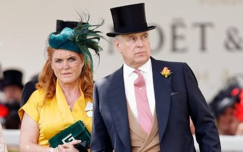 Sarah Ferguson dismisses Prince Andrew scandal as 'nonsense' saying it is 'incredible what he has done for Britain'