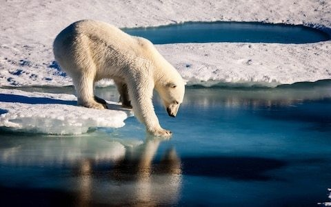 Climate change not as threatening to planet as previously thought, new research suggests