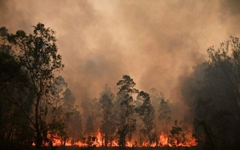 The world must recognise that climate change is a health as well as an environmental emergency