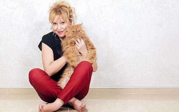 Cats do not need their owners, scientists conclude