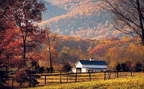 Virginia, USA: falling for autumn glories
