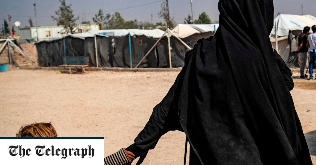 Fears of coronavirus spreading through Al-Hol refugee camp after three health workers test positive