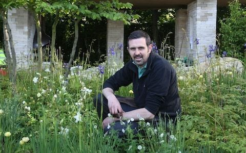 Gardens will look completely different in 20 years time as pests are out of control, Gardeners' World presenter warns