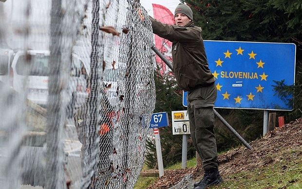 Austria's border fence could have 800-yard gap as local winemakers make a stand