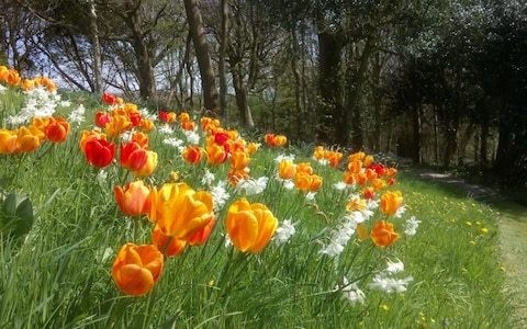 Three gardens to visit this weekend
