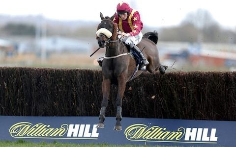 William Hill cuts losses as plan to shut 700 shops gathers pace