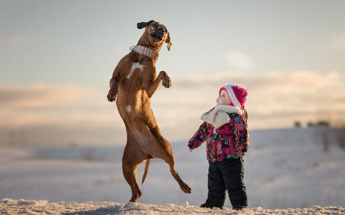 11 photos of little kids with big dogs that will fill your heart with joy