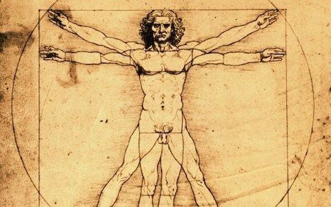 Italian court blocks loan of Leonardo da Vinci's Vitruvian Man to the Louvre