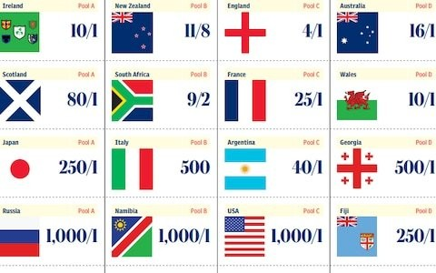 Rugby World Cup 2019 sweepstake kit: Download and print yours here