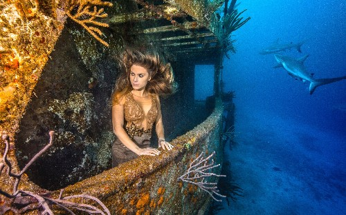 Snappy dresser: Model poses for underwater fashion shoot with sharks, in pictures