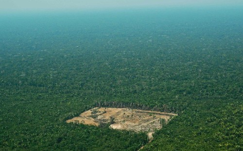 Amazon deforestation increases by 278% in a year, institute warns climate skeptic president Bolsonaro