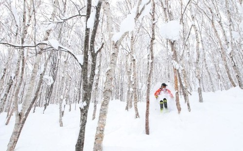 Eight strange but true facts skiers should know about Japan