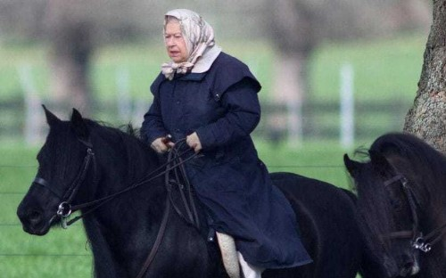 The Queen is pictured still riding at 90 - and without a helmet - as she heads out on her pony near Windsor Castle