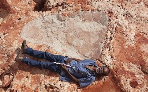 World's biggest dinosaur footprints found in 'Australia's Jurassic Park'