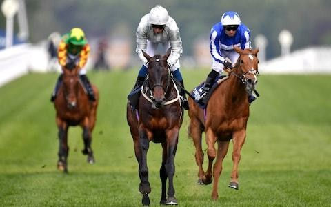 Dee Ex Bee strides towards Gold Cup with victory at Sandown