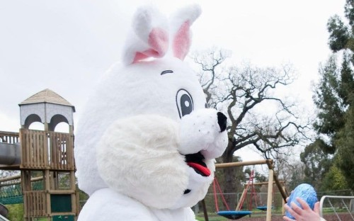 Canadian couple who lost foster children over Easter Bunny win legal battle
