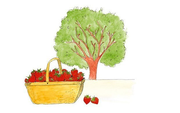 The traditions behind eating seasonally