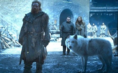 The good boy of Game of Thrones: how Ghost became the tragic hero of season 8