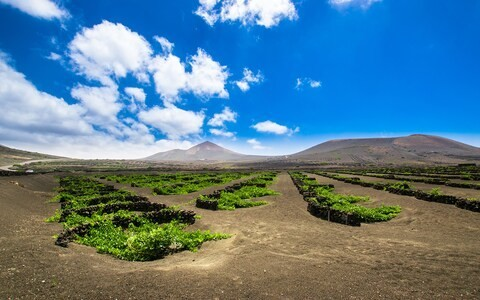 The top 10 food and drink experiences to have in the Canaries