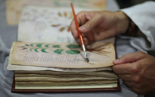 Voynich Manuscript: exact replicas to be made of 'world's most mysterious book'