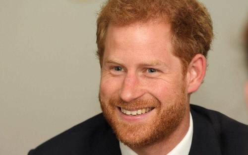 31 things you didn't know about Prince Harry
