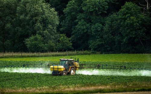 Number of toxic chemicals applied to vegetables has risen 17 fold since the 1960s