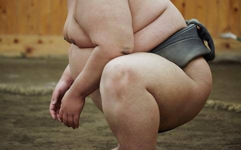 The dark side of sumo wrestling – and the etiquette of watching a bout
