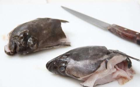 Wonky fish: Tongues and fins on the menu in new responsible eating trend