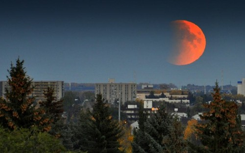 Blood Moon: Total 'supermoon' lunar eclipse photographed by our readers - Telegraph