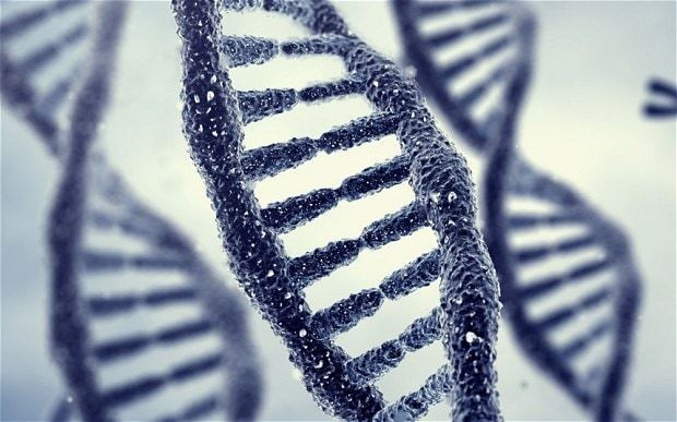 Can our DNA turn us into criminals?