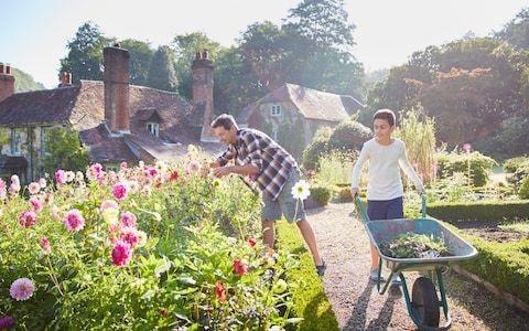 GPs should prescribe gardening, dancing and cookery, Matt Hancock says