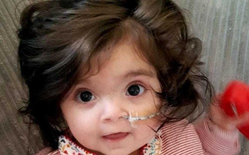 'People think she's a doll': Baby has so much hair that people think it's a wig