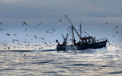 Theresa May could waive rights to 95 per cent of British waters after Brexit, fishermen fear