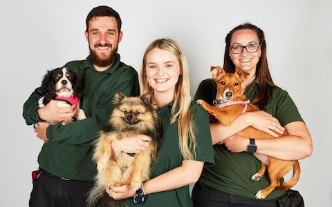 'These dogs save people's lives': inside The Dog House, the most charming – and emotional – show on TV
