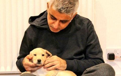 Sadiq Khan announces arrival of new puppy