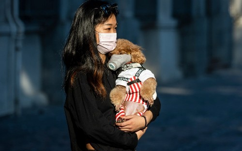 Can pets get coronavirus?