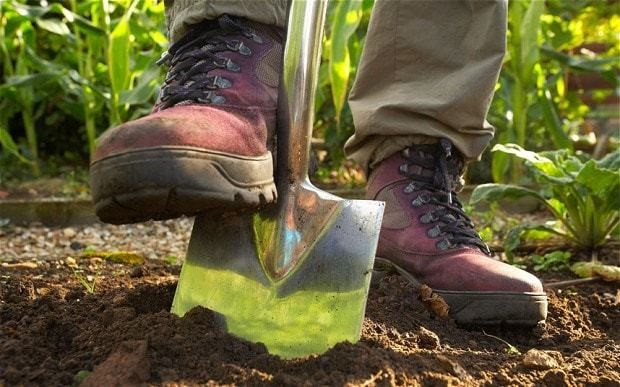 Must Britain now Dig for Survival?
