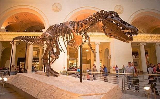 The curse of the $8 million dinosaur