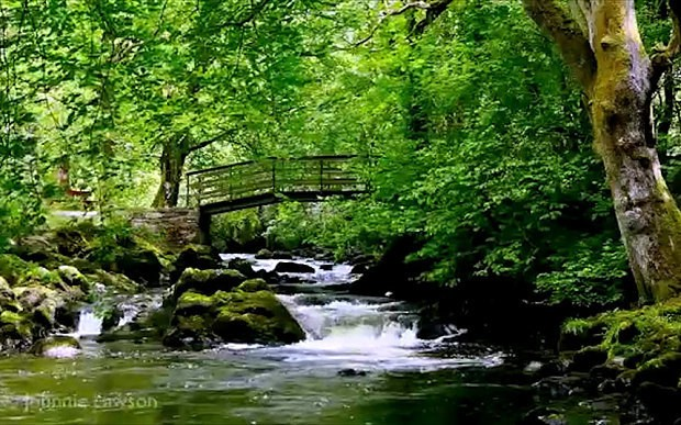 Irish waterfall video becomes unlikely YouTube hit for insomnia sufferers