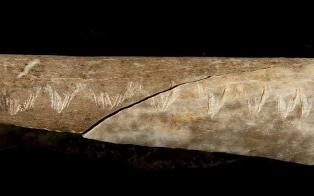 Prehistoric Britons ate their dead and carved mysterious markings on their bones