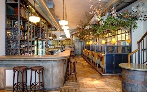 Kathryn Flett reviews Loyal Tavern, London : 'My cod and white bean stew was the kind of thing I want to eat daily'