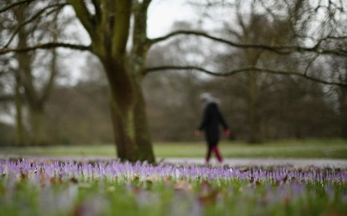 London attractions: what to see and do in spring