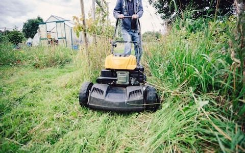 Grass cuttings from roadside verges to be sold to the National Grid to raise money to save the environment