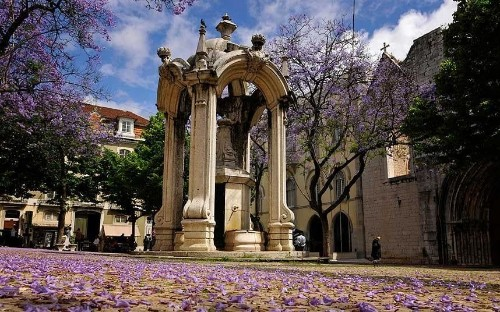 Lisbon attractions: what to see and do in spring
